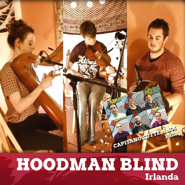 hoodmanblind